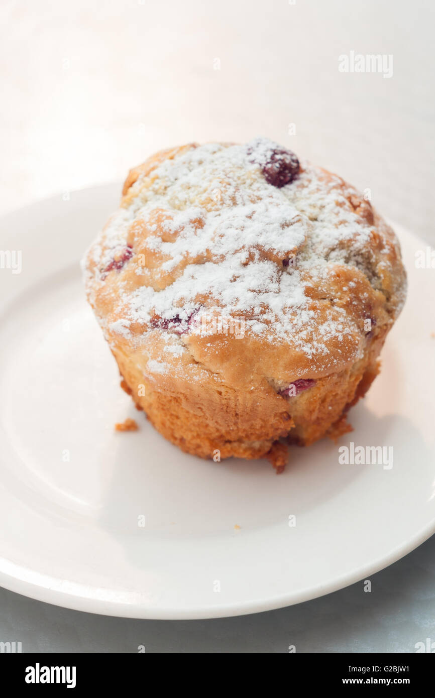Freshly baked raspberry muffin dusted with icing sugar and photographed with shallow focus - Stock Image