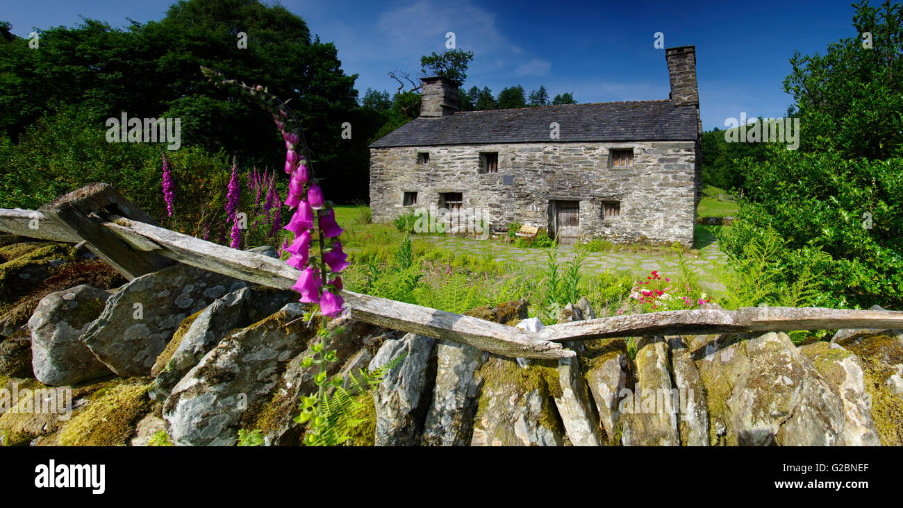 Ty Mawr,Birthplace of Bishop Morgan, - Stock Image