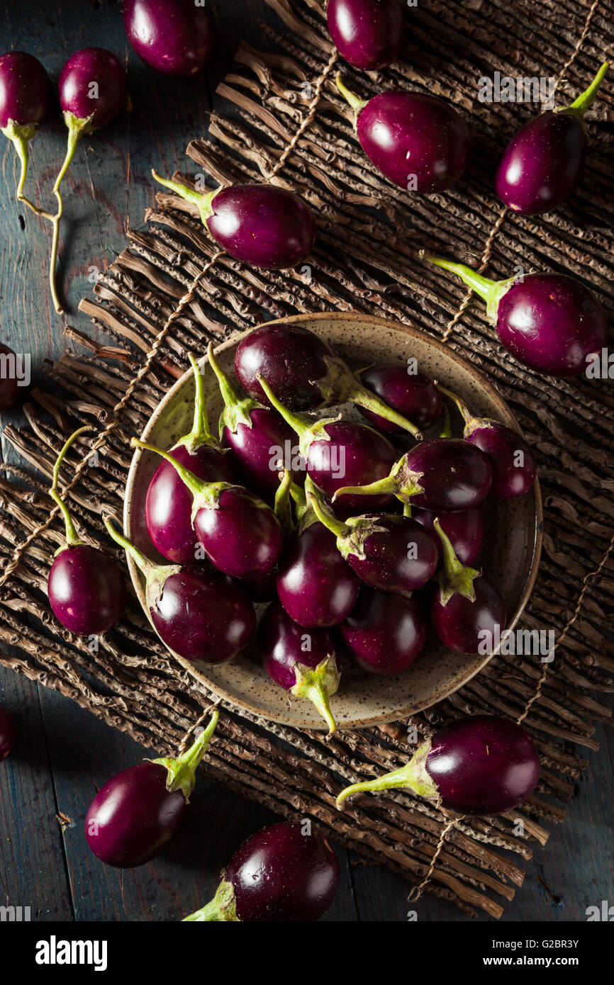 Organic Raw Baby Indian Eggplants in a Bowl - Stock Image