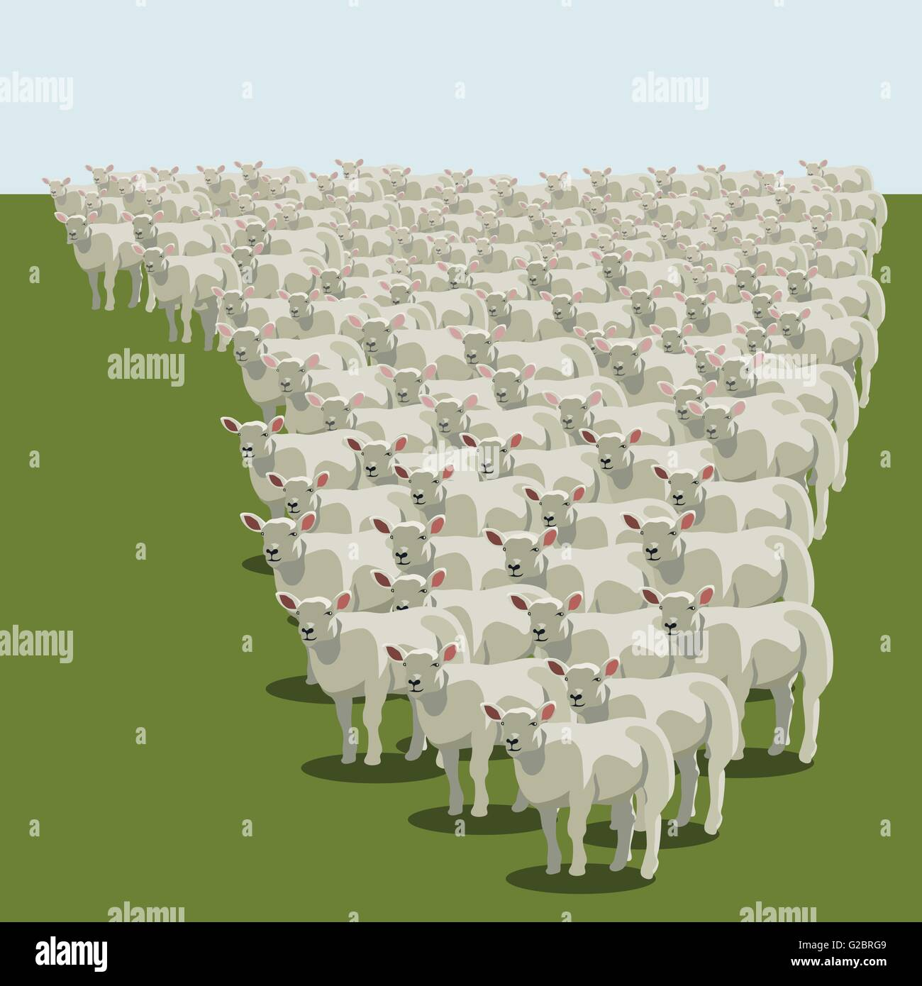 Animal sheep herd queuing, keeping together, vector - Stock Vector