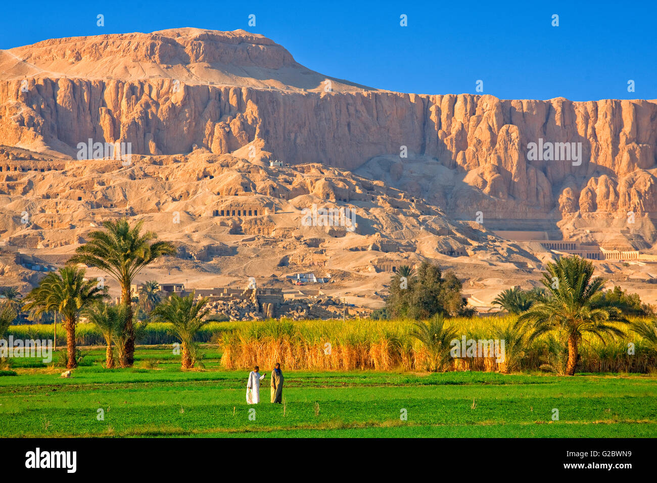 The Nile valley at Luxor - Stock Image