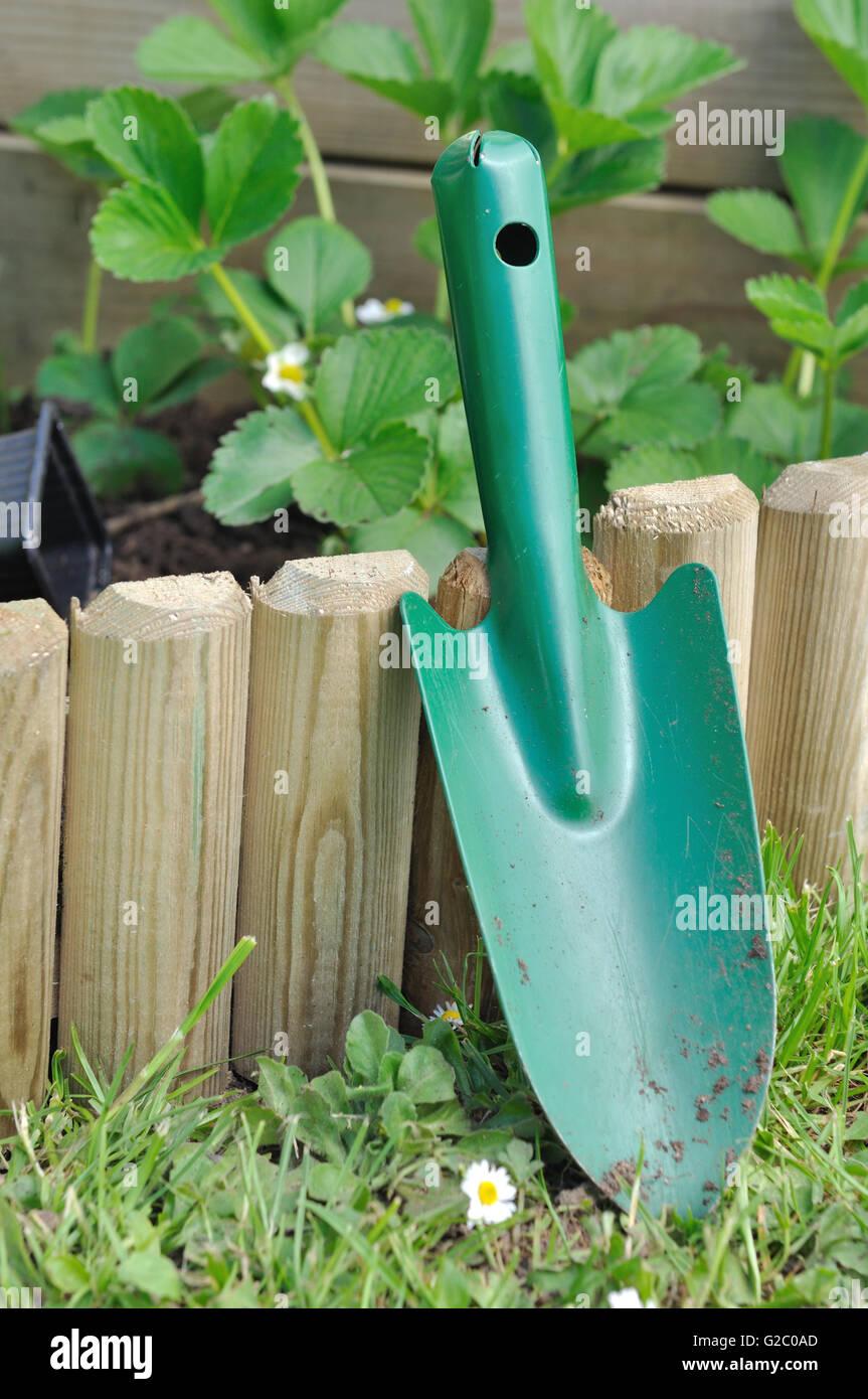 shovel against a wooden border in garden - Stock Image