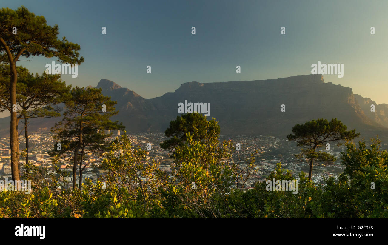 Table Mountain From Signal Hill In The Evening Light - Stock Image