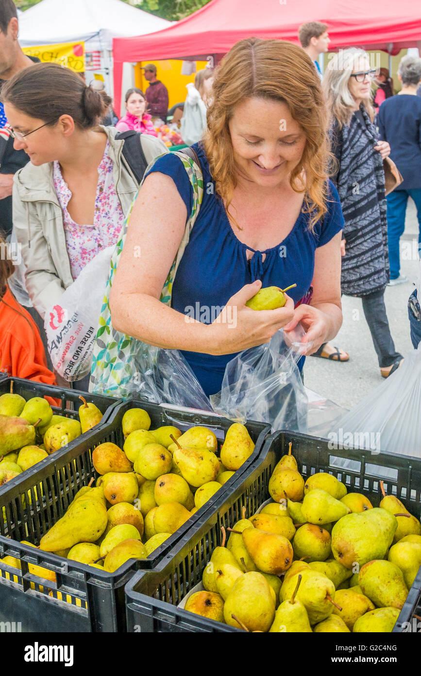 Woman buying pears, Kitsilano Farmers Market,  Vancouver, British Columbia, Canada - Stock Image