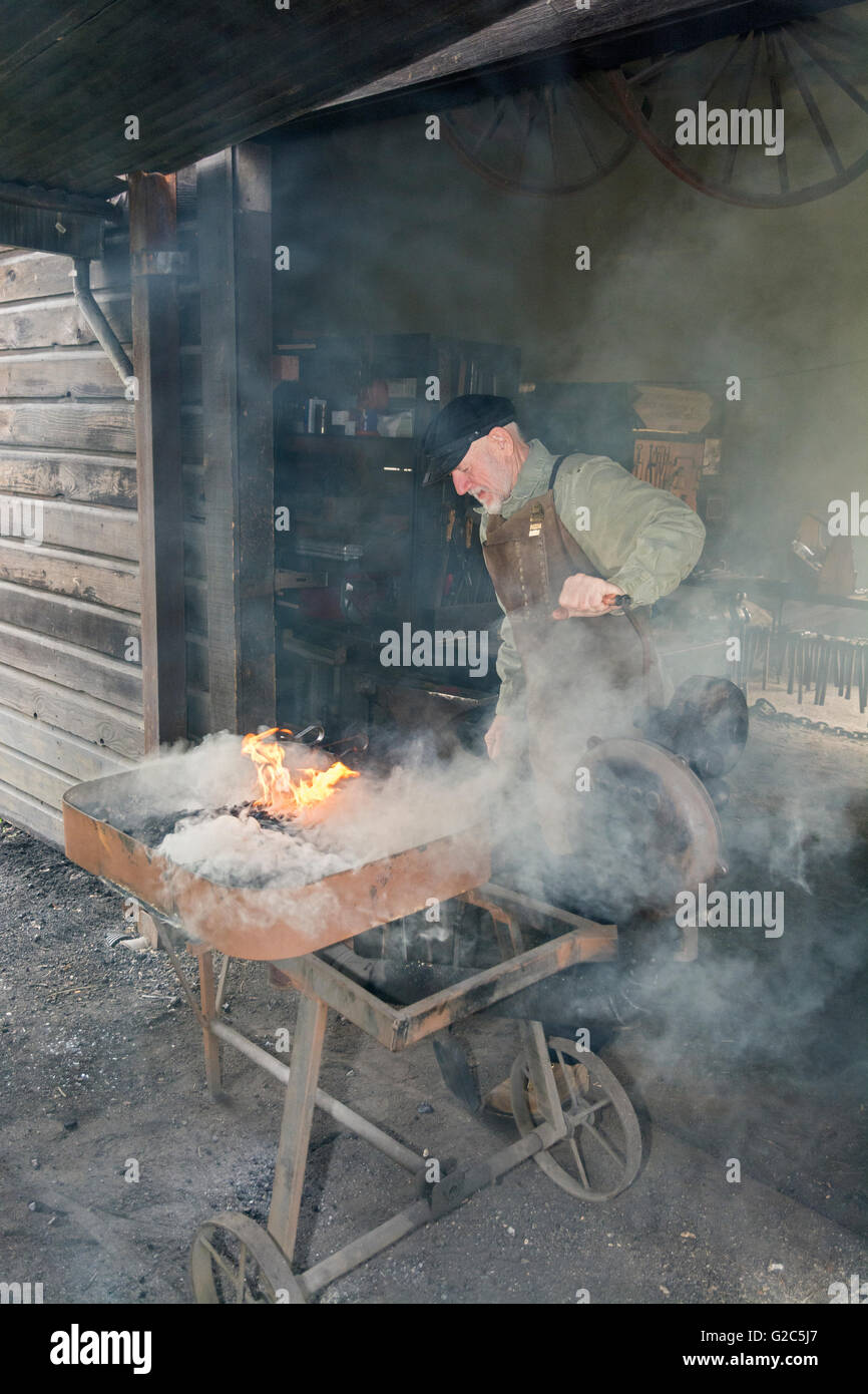 California, Coloma, Marshall Gold Discovery State Historic Park, blacksmith lighting coal in forge - Stock Image