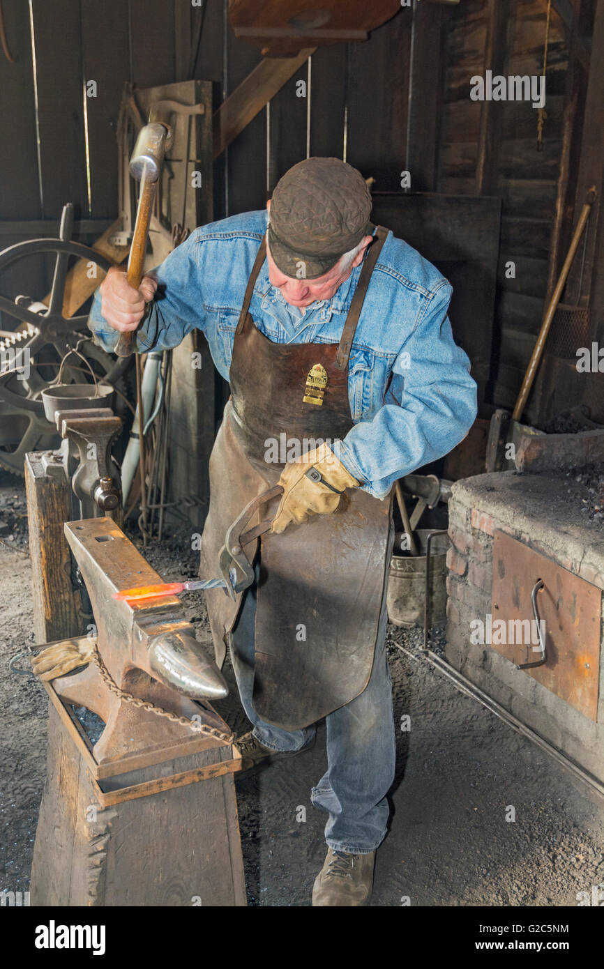 California, Coloma, Marshall Gold Discovery State Historic Park, blacksmith forming knife bladel on anvil - Stock Image