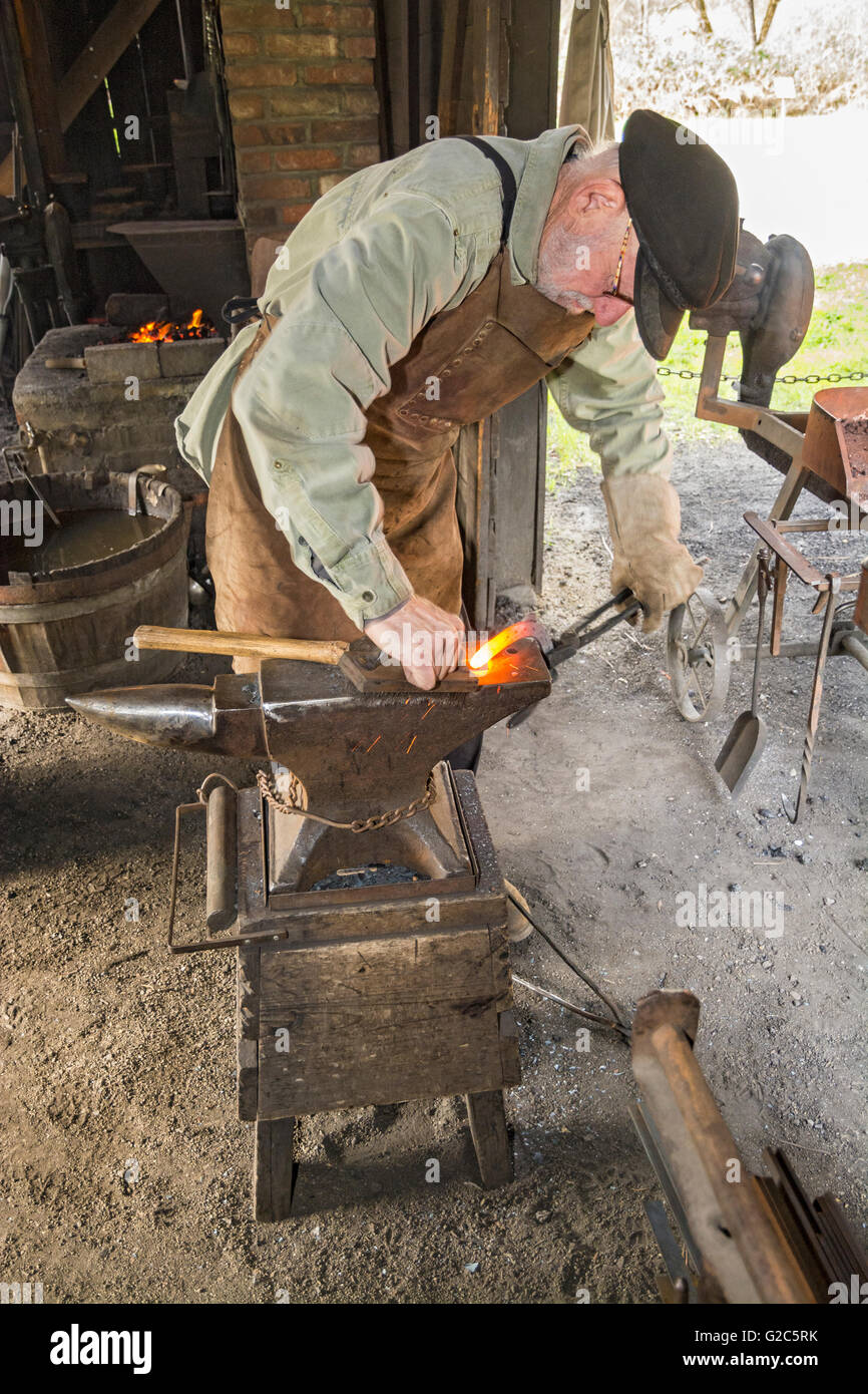 California, Coloma, Marshall Gold Discovery State Historic Park, blacksmith forming red hot horseshoe on anvil - Stock Image