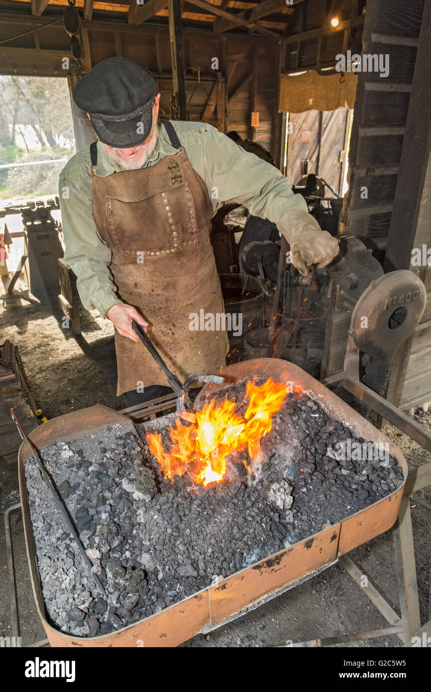 California, Coloma, Marshall Gold Discovery State Historic Park, blacksmith heating horseshoe in forge - Stock Image