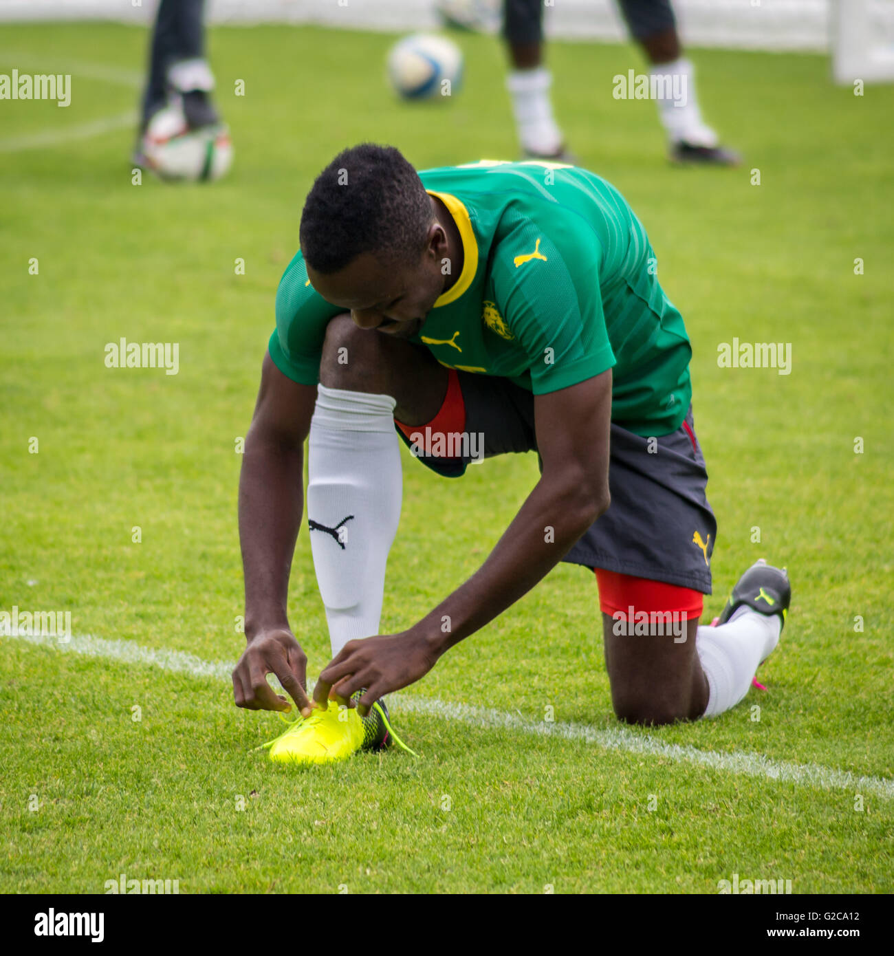 Cameroon national football team training session in Nantes, France. - Stock Image