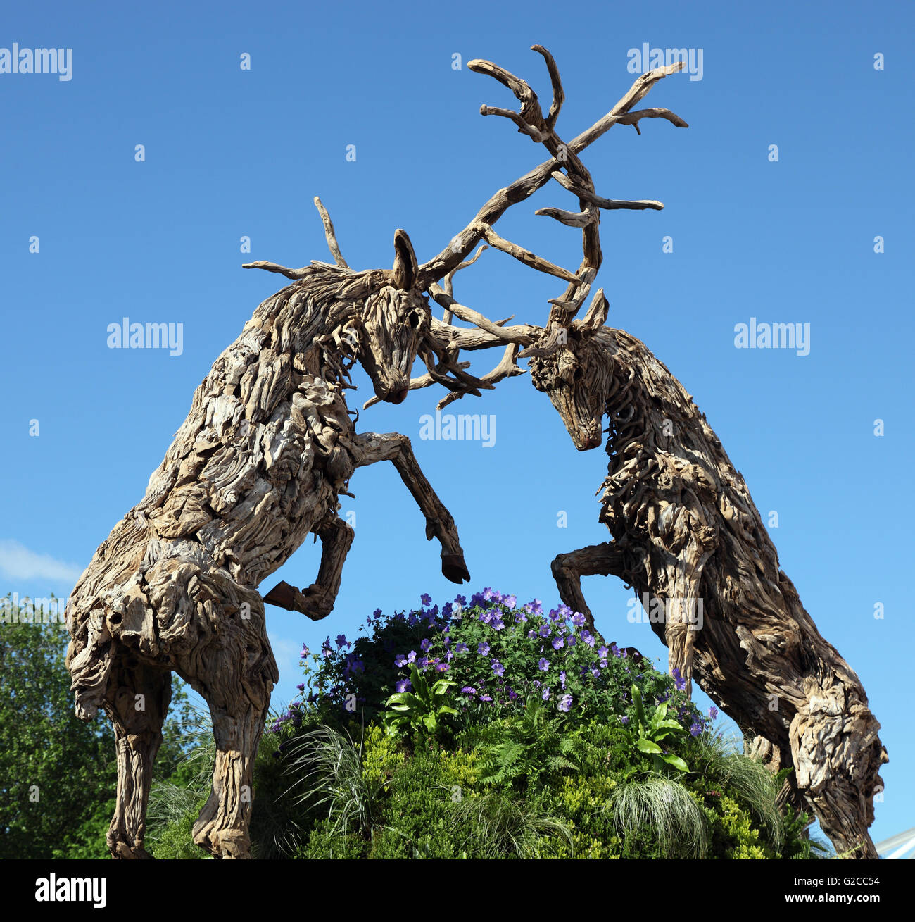 Driftwood fighting stag sculpture by James Doran Webb, RHS Chelsea Flower Show - Stock Image