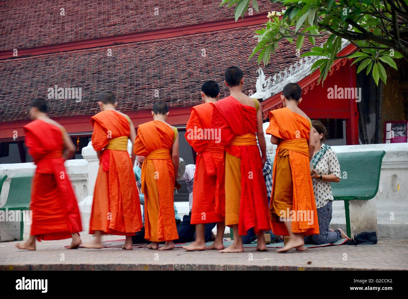 Tradition of almsgiving with sticky rice by Monks procession walk on the road for people put food offerings at Wat Stock Photo