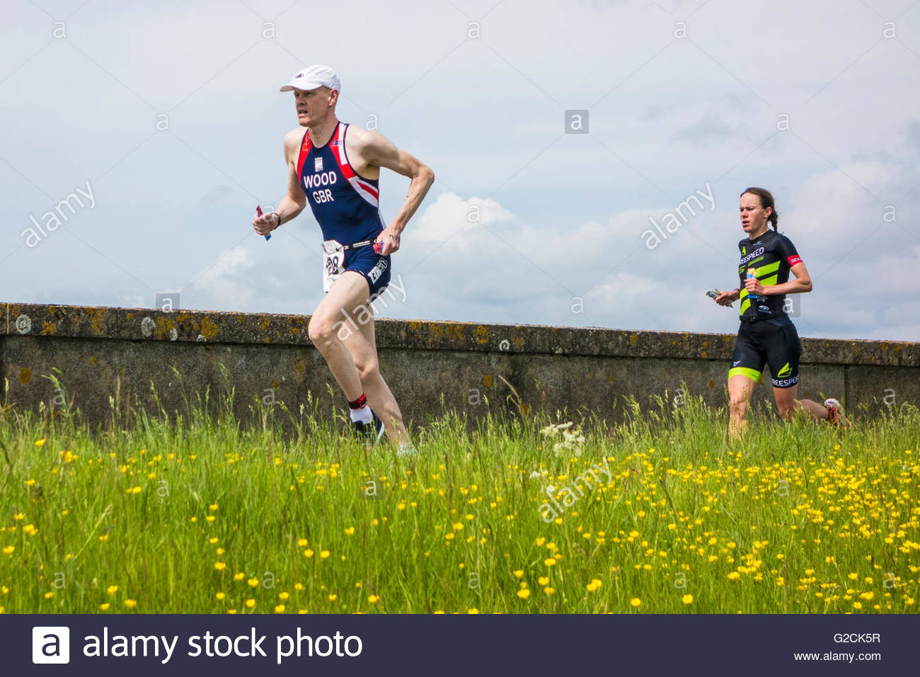 Runners in a triathlon at Grafham Water run along the dam wall with buttercups in the adjacent field - Stock Image