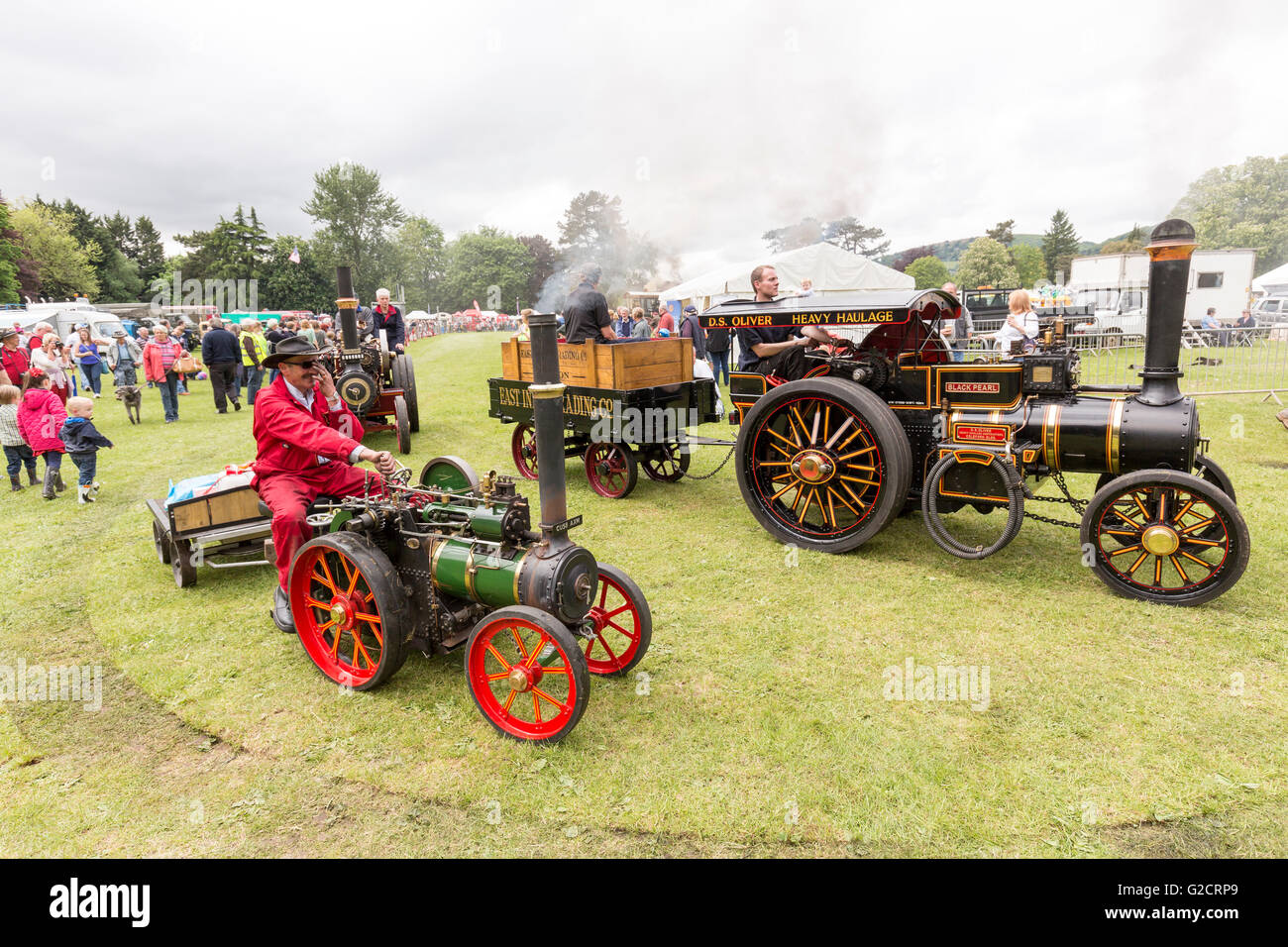 Steam engines at fair, Abergavenny, Wales, UK - Stock Image