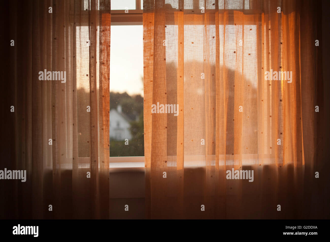 Sheer Curtains in Window - Stock Image