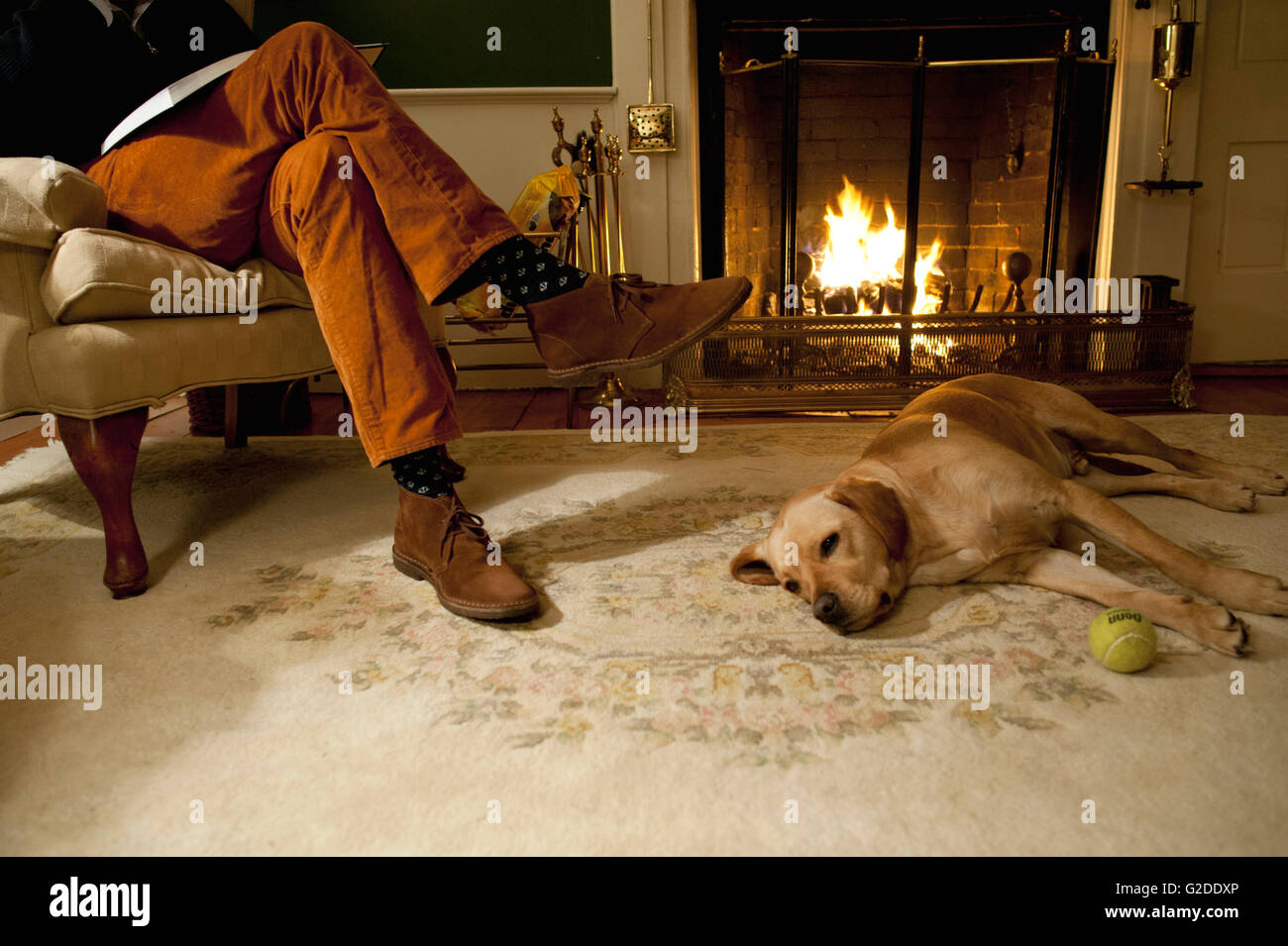Dog Laying at Man's Feet by Fireplace - Stock Image