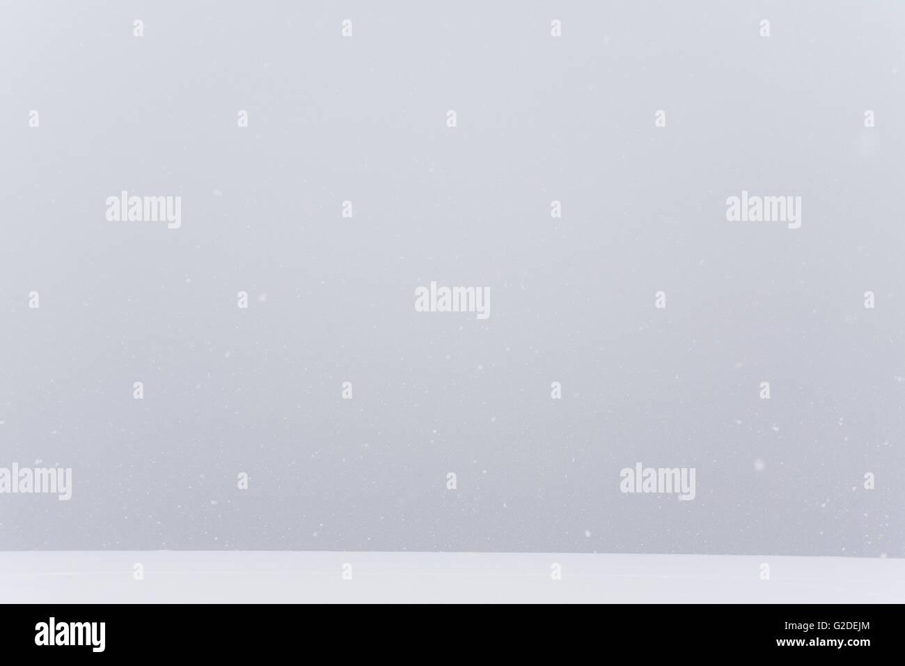 Stark Winter Landscape - Stock Image