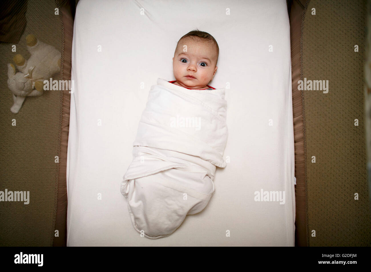 Wide-Eyed Infant Wrapped in Blanket - Stock Image