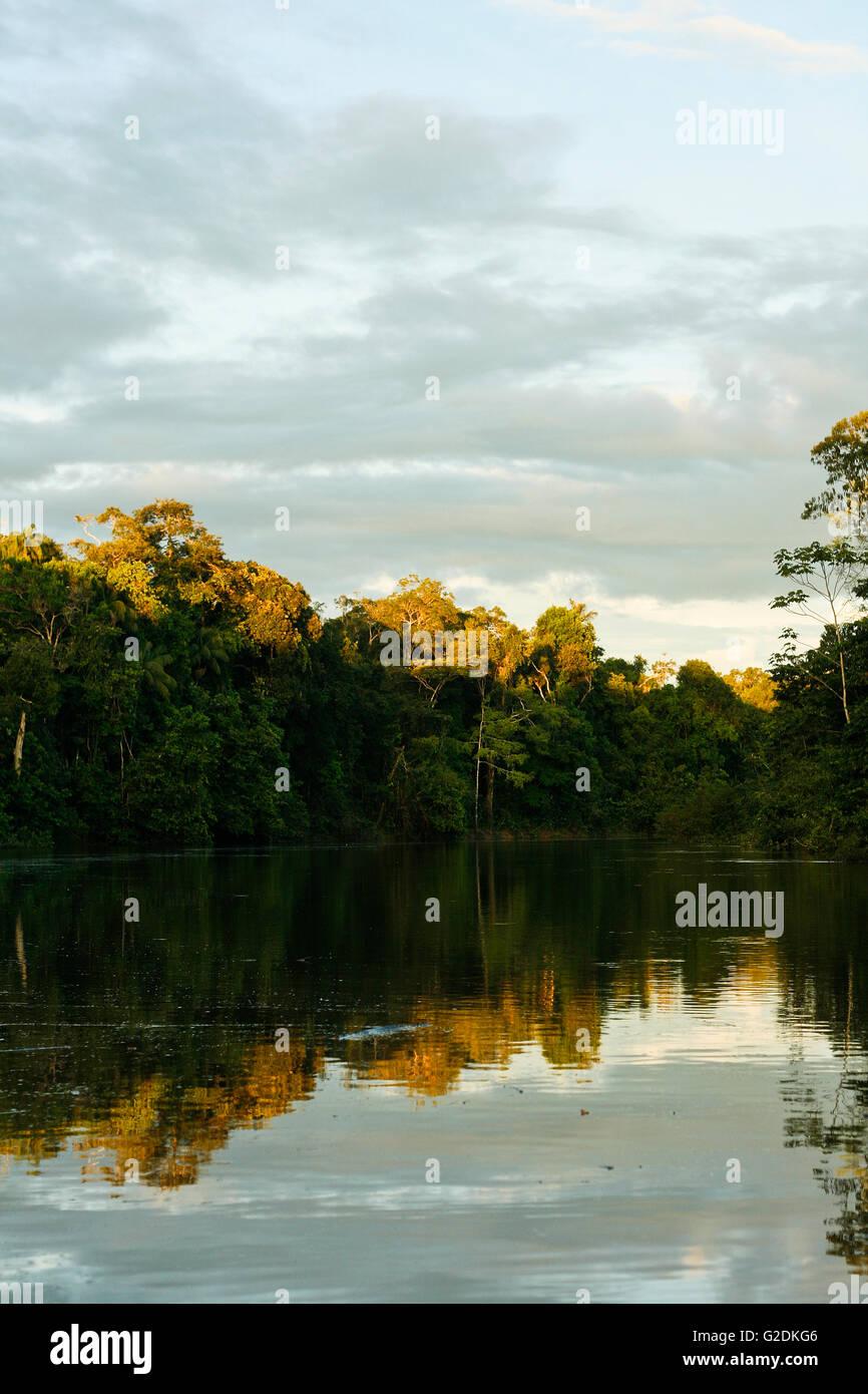 Matses reserve. Amazon. Peru Stock Photo
