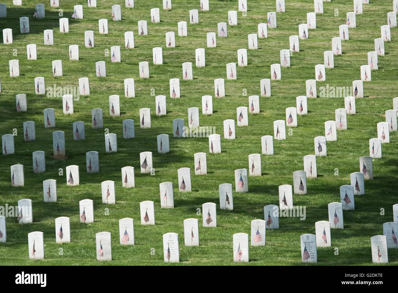 Thousands of American flags mark graves of soldiers who died in battle at Arlington National Cemetery in honor of - Stock Image