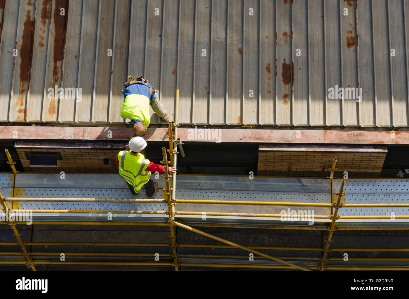 Male workers in high visibility (hi-vis) apparel working on the steel roof of a multi story building site, on coloured - Stock Image