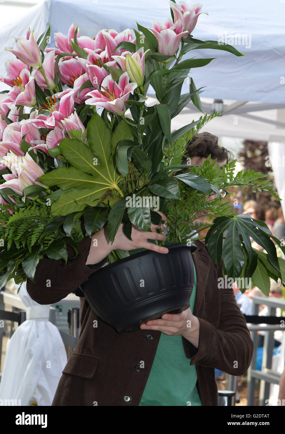 Chelsea flower show last day