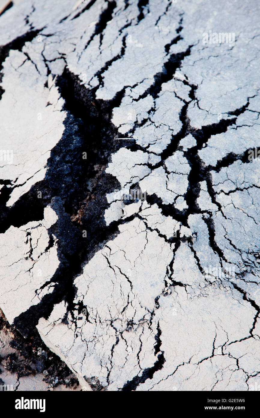 Cracks in Tar on Street, Abstract - Stock Image