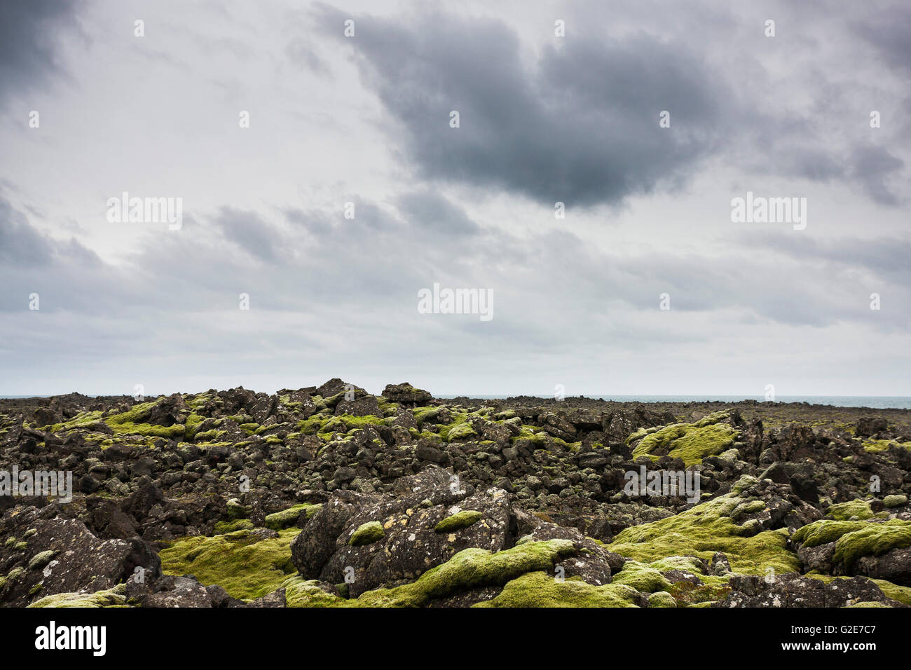 Lava Field Covered in Moss, Iceland - Stock Image