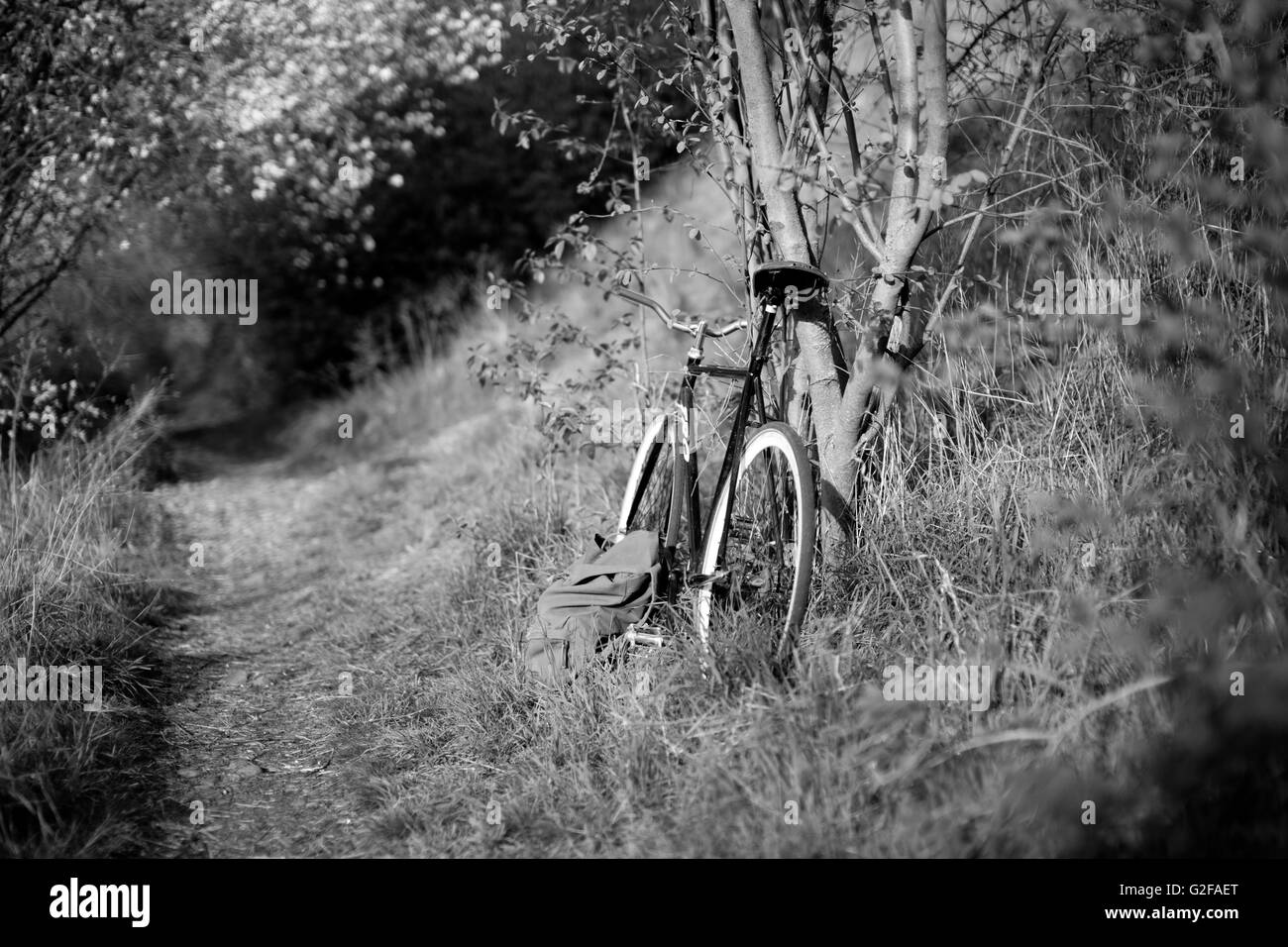 Bicycle Parked on Side of Path - Stock Image