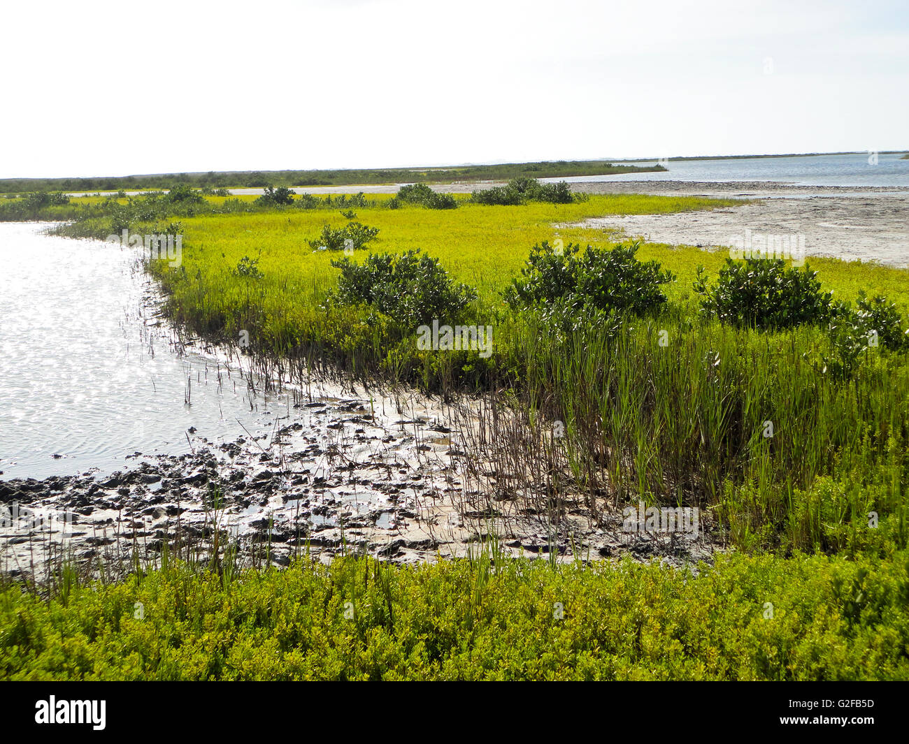 Mustang Island Natural Preserve, Corpis Christie, Texas - Stock Image