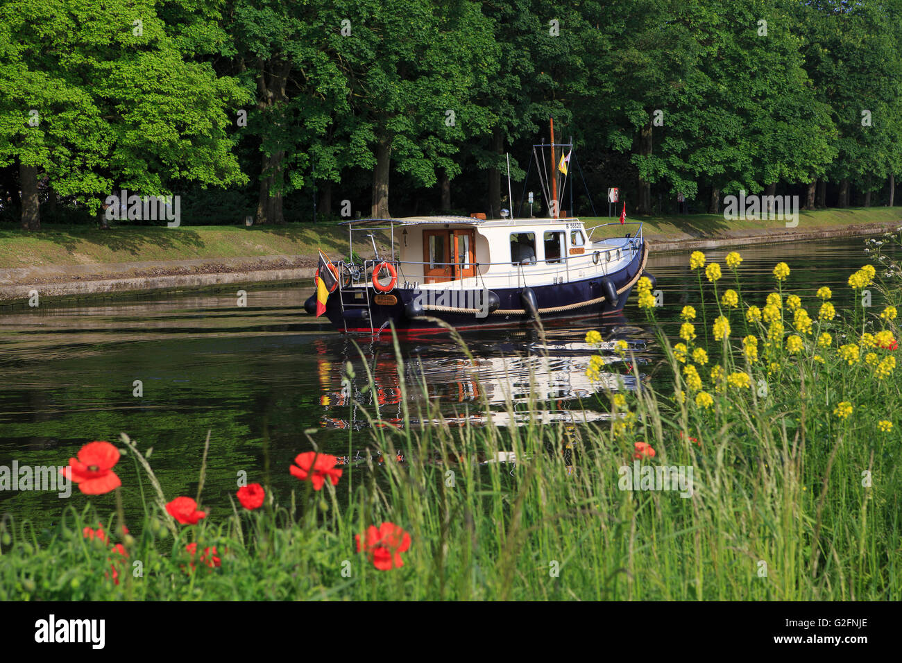 A motorboat cruising on the ring canal near the Kruisvest in Bruges, Belgium - Stock Image
