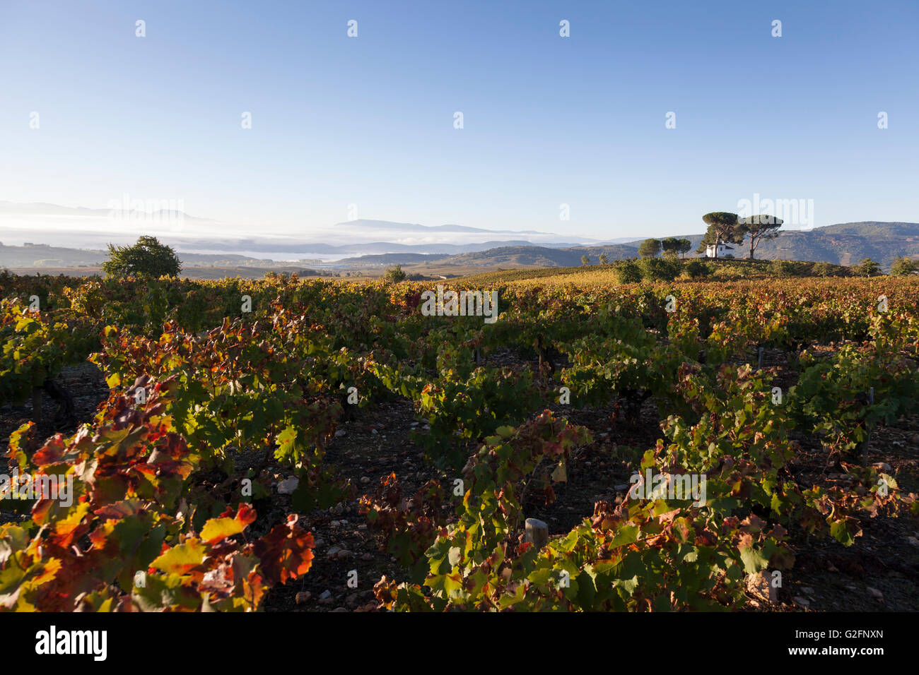 Villafranca del Bierzo, Spain: Idyllic white home with vineyards along the Camino Francés. - Stock Image