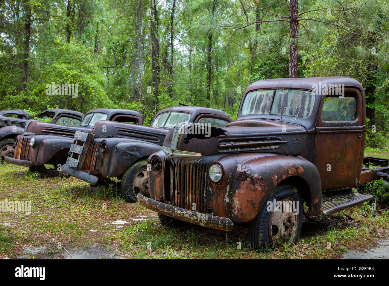 Old Cars For Sale Stock Photos Old Cars For Sale Stock: Old Rusted Abandoned Cars And Trucks In Crawfordville
