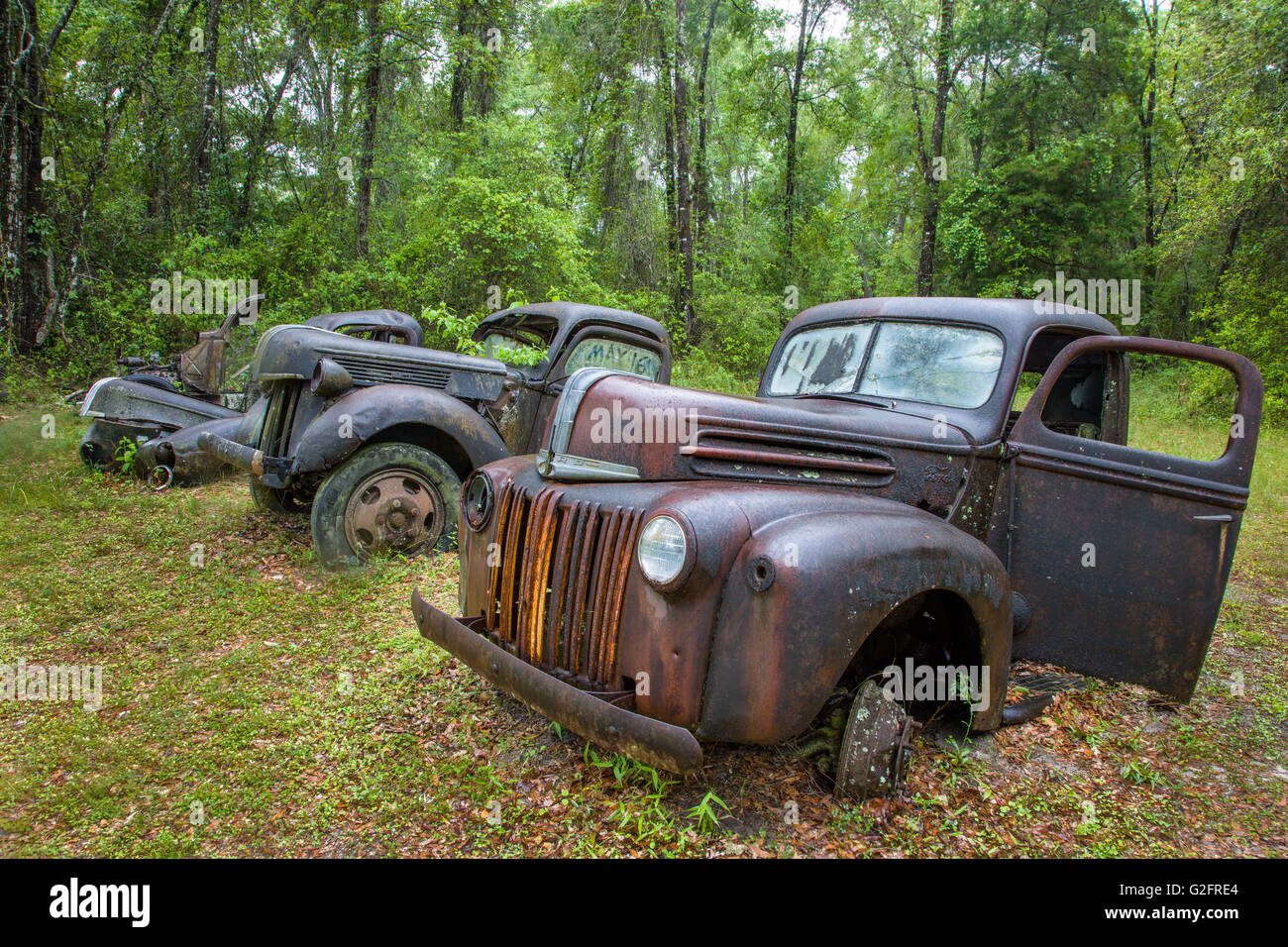 Old rusted abandoned cars and trucks in Crawfordville Florida Stock ...