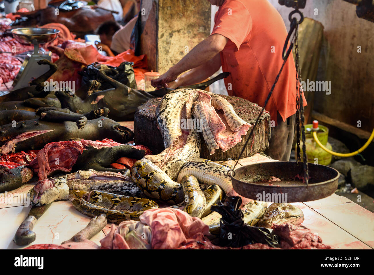 Meat of snake on Tomohon Traditional Market. North Sulawesi. Indonesia - Stock Image