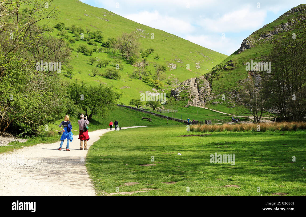 Walkers and sightseers at Dovedale in the Derbyshire Peak district - Stock Image