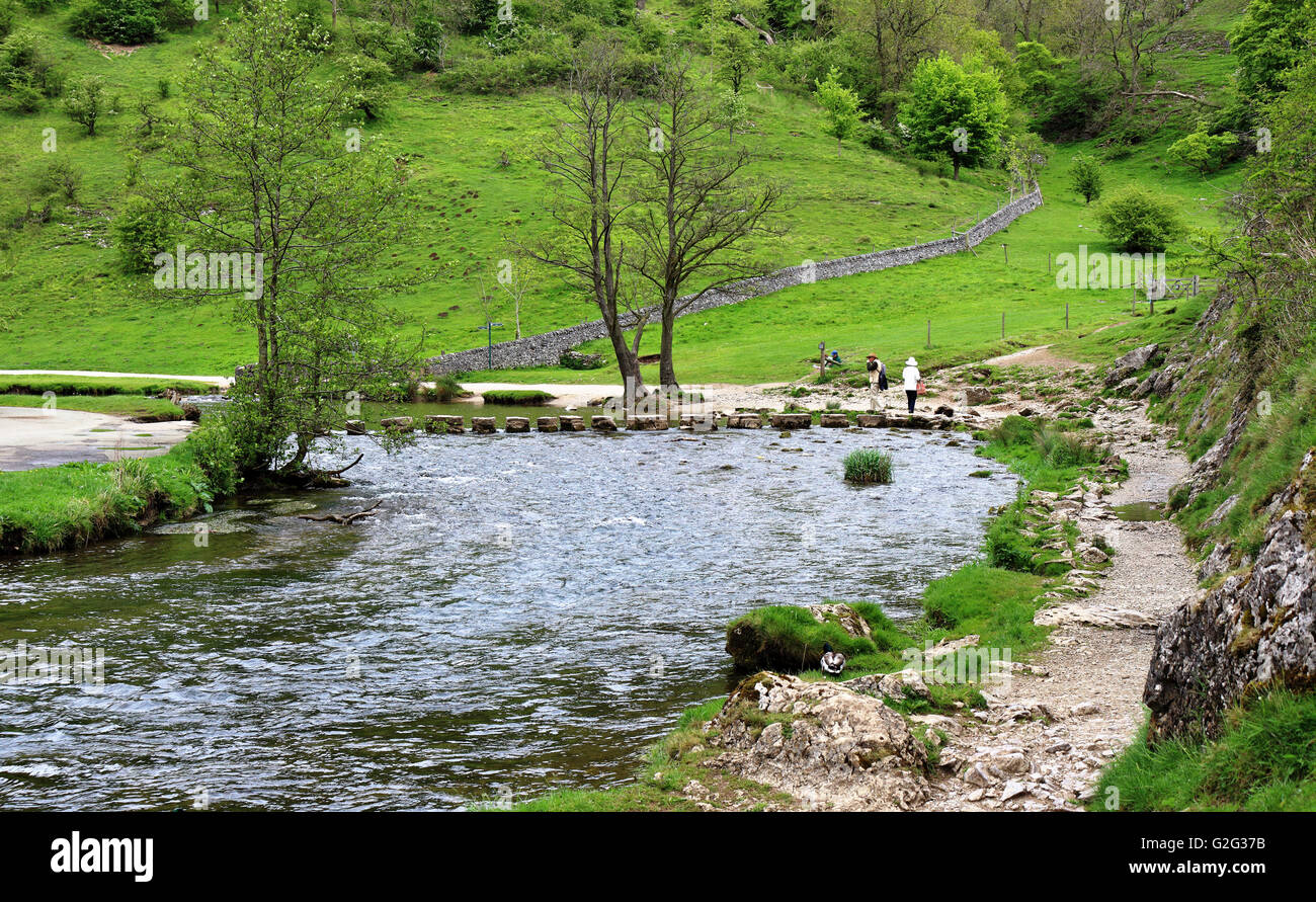 The Stepping stones at Dovedale in the Derbyshire Peak district - Stock Image