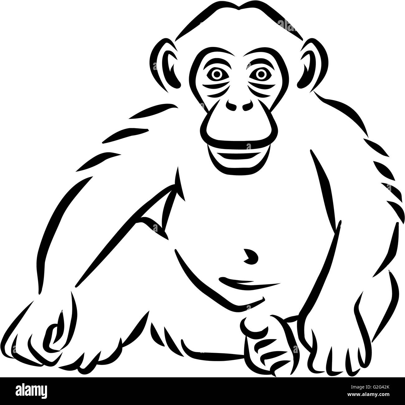 sitting baby chimpanzee hand drawn stock photo 104845963 alamy