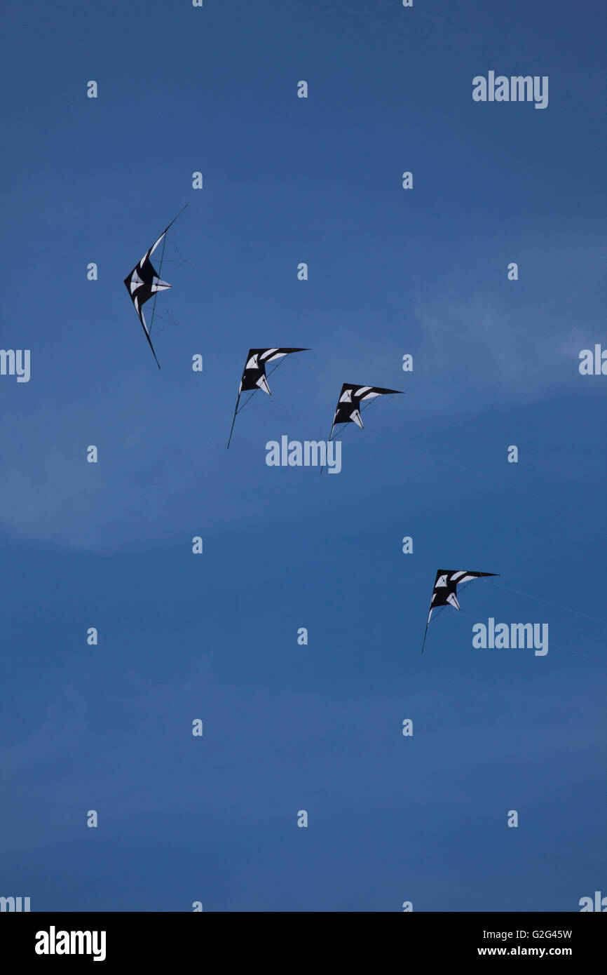 Four Kites Flying Against Blue Sky, Low Angle View Stock Photo