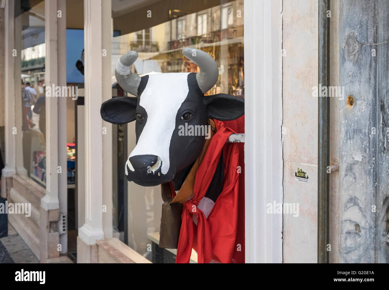 Imitation bull head protruding from a store display window, Lisbon, Portugal - Stock Image