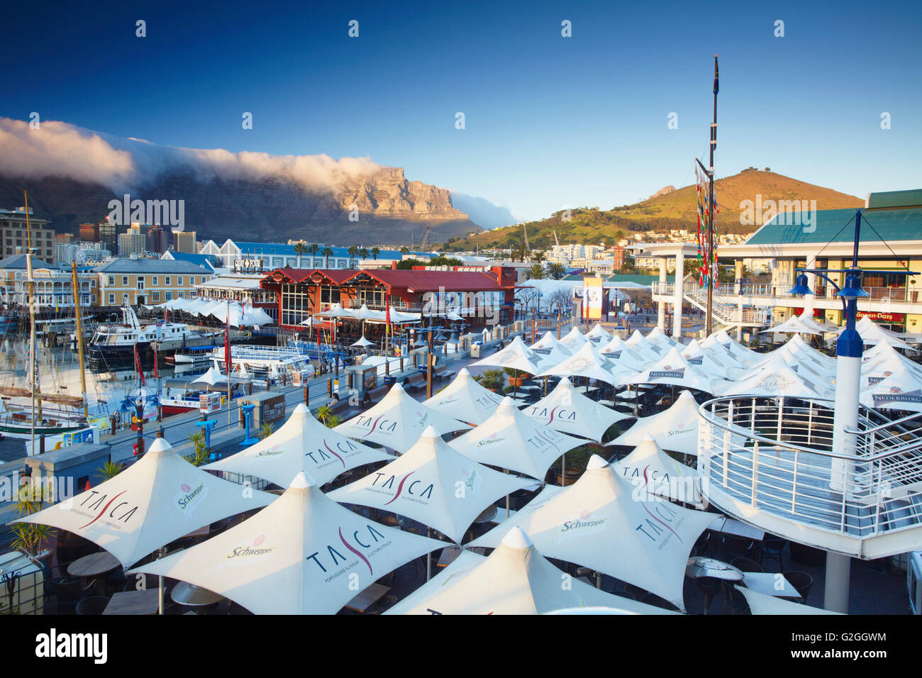 Victoria and Alfred Waterfront at dawn, Cape Town, Western Cape, South Africa - Stock Image