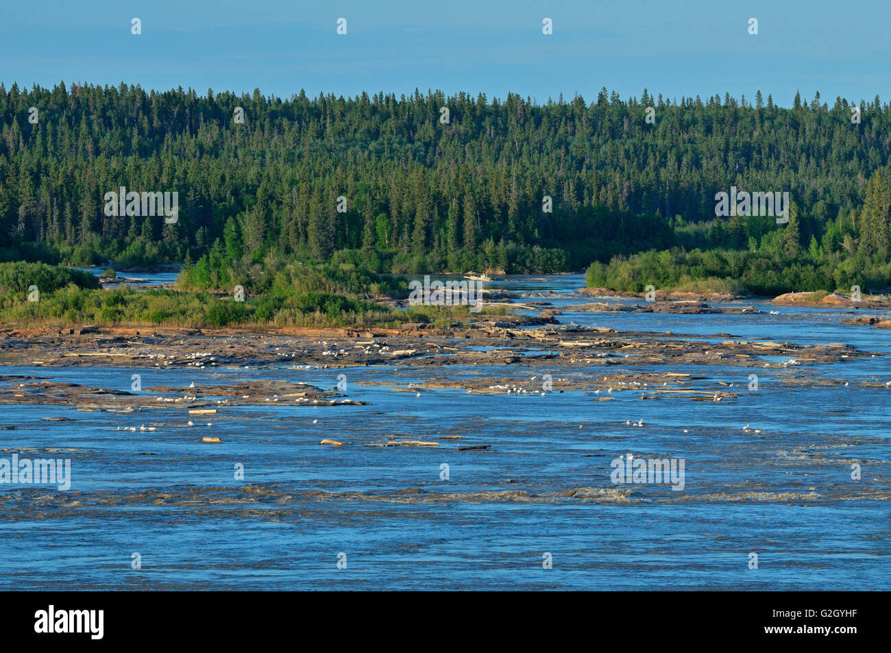 Pelican Rapids on the Slave River near Ft. Smith Northwest Territories Canada - Stock Image