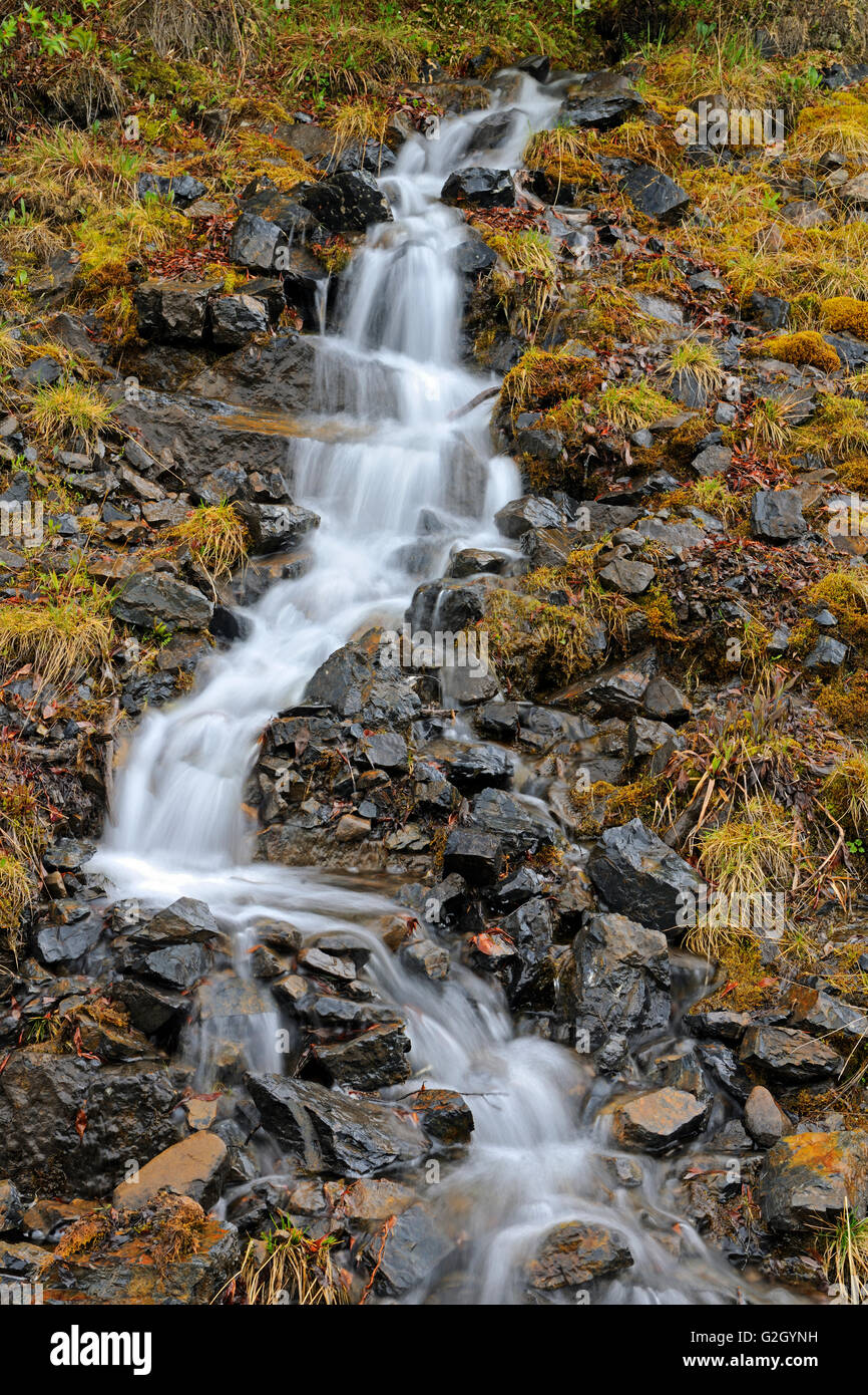 Waterfall along the Dempster Highway in the Tombstone Range (Ogilvie Mountains) Dempster Highway Yukon Canada - Stock Image