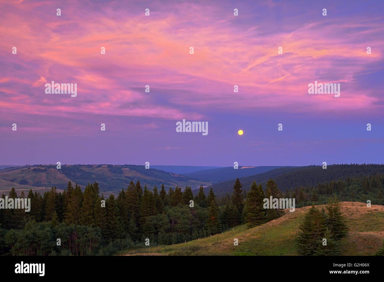 Full moon at sunset from Reesor Lake VIewpoint Cypress Hills Provincial Park Alberta Canada - Stock Image