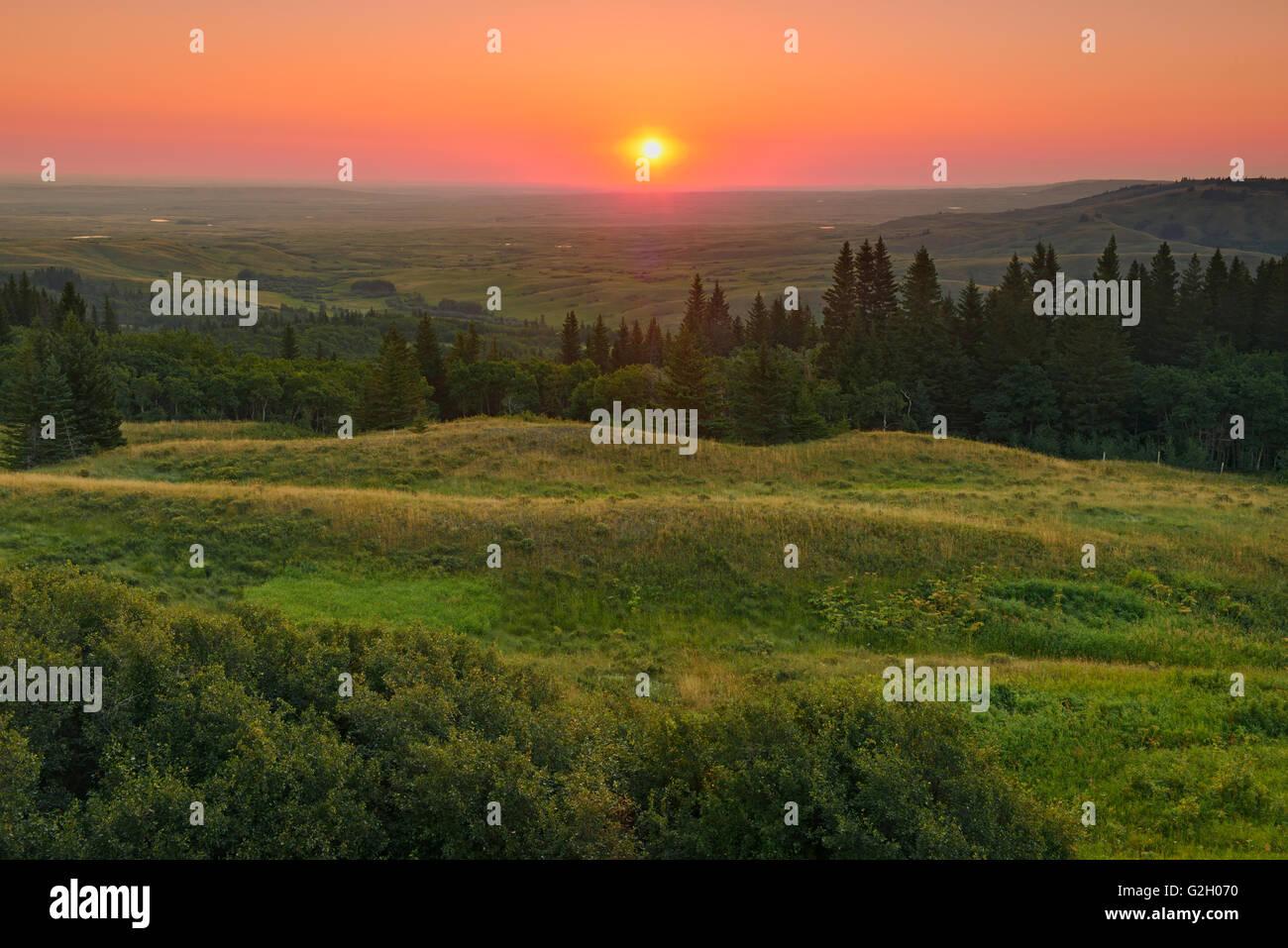 Sunrise on prairie from Reesor Viewpoint on Reesor Lake Road. Dark-Sky Preserve Cypress Hills Provincial Park Alberta - Stock Image