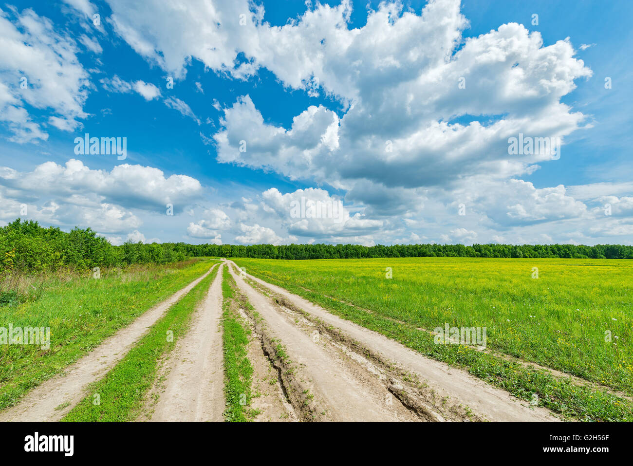 Wide road by the field with flowers at hot day summer time. - Stock Image