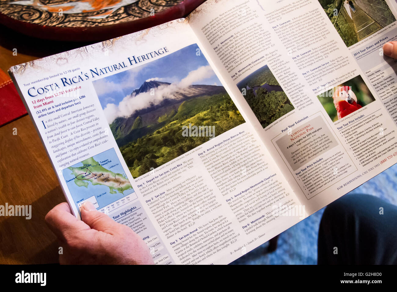 Man looking at travel brochure for Costa Rica, dreaming of a vacation there - Stock Image