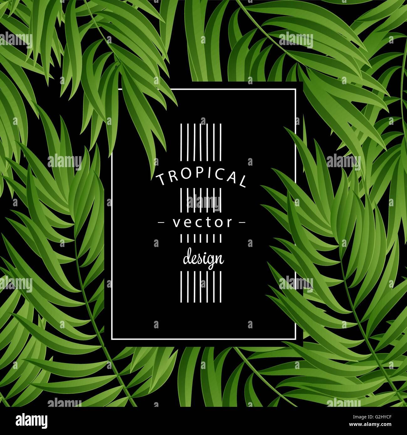 Tropical Palm Leaves Tropic Leaf Green Summer Frame
