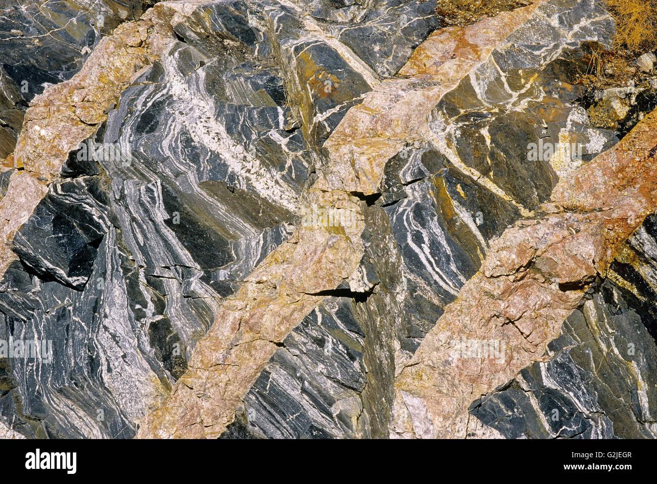 Detail of veins in rock Schreiber Ontario Canada - Stock Image