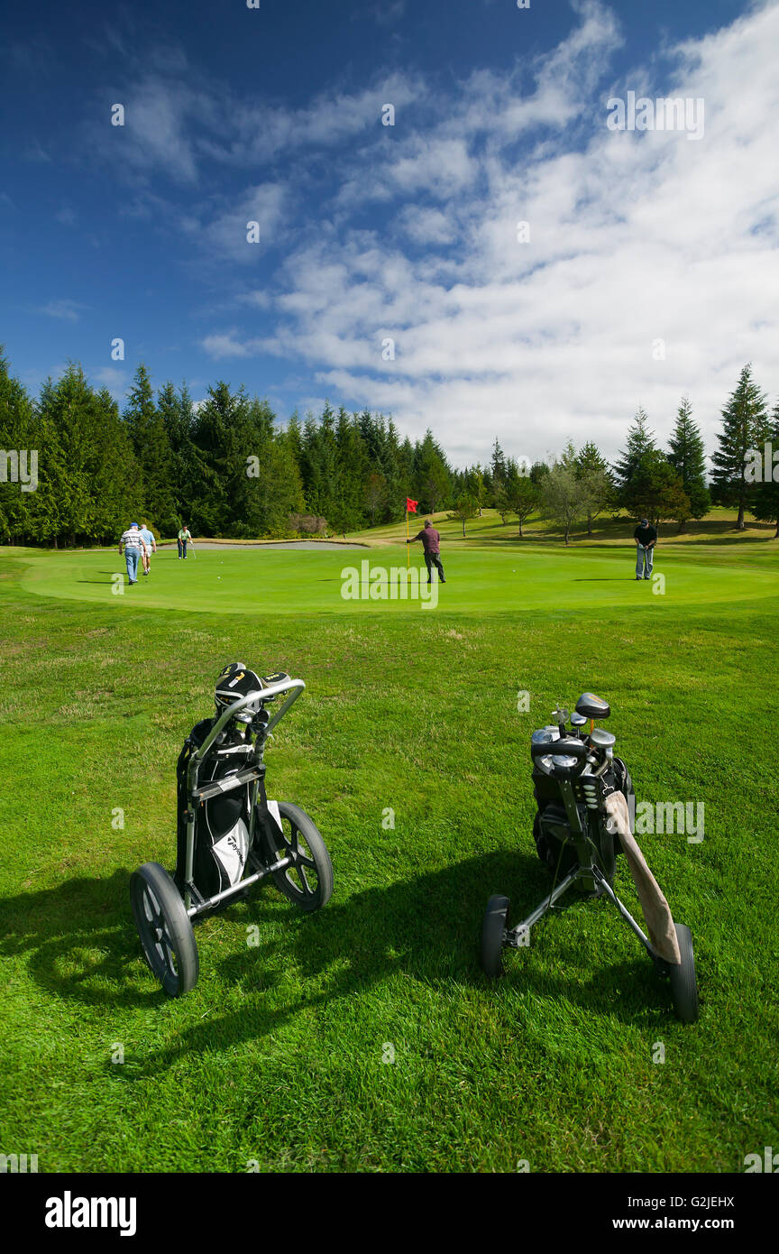 Golf carts frame golfers putting on a green Hidden Hills Golf Course on Northern Vancouver Island Port McNeill Northern - Stock Image