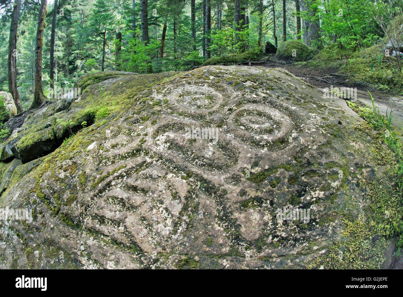 Nuxalk petroglyphs, temperate rainforest, Bella Coola, coastal British Columbia - Stock Image